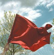 Redflagmayfirst